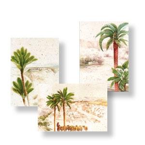 Doppelkarten mit Palmenmotiven, 3-er Set