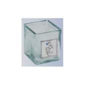 Kleiner Kakteen-Übertopf aus Glas