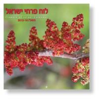 Großer Fotokalender - Flowers of Israel 2015/2016