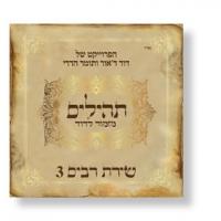 Mizmor LeDavid - Tehillim